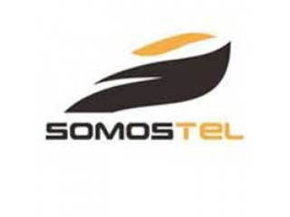 Поступление Somostel